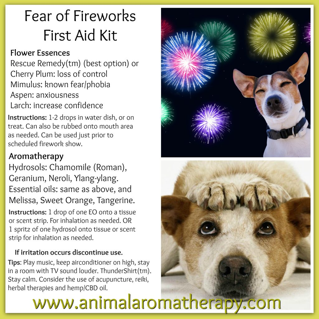 Fear of Fireworks Relief Tips